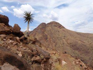 db_GEO-EXX_Namibia_016_P11305371
