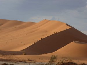 db_GEO-EXX_Namibia_077_P11503891