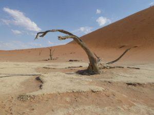 db_GEO-EXX_Namibia_090_P11507471